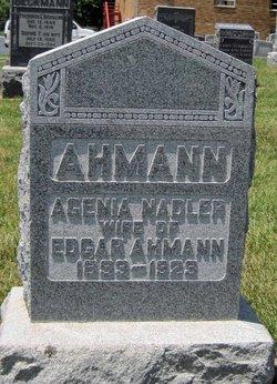 Agenia <i>Nadler</i> Ahmann