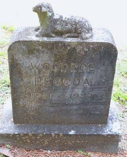 Woodrow Pegoda