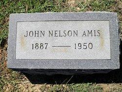John Nelson Amis