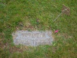Anna P. Breisch