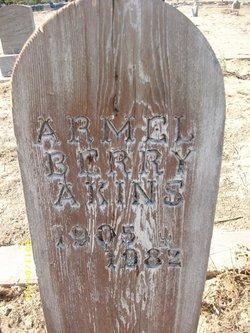 Armel Berry Akins