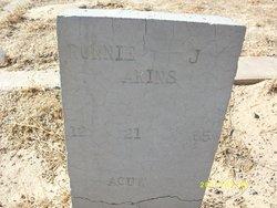 Ronnie J Akins