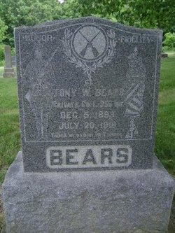 Tony W Bears