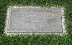 Lorgio Ayala-Salinas