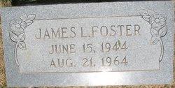 James L. Foster
