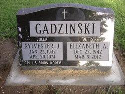 Sylvester J Sully Gadzinski