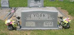 Denver Sylvester York