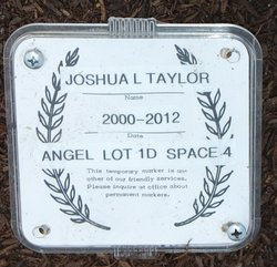 Joshua Lee Taylor