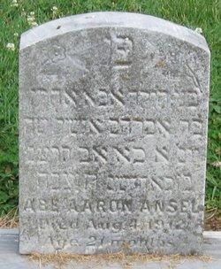 Abe Aaron Ansel