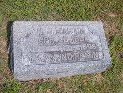 H J Martin