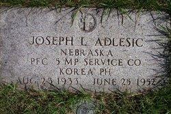 Joseph L Adlesic