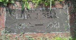 Ilma J Beck