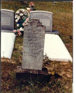 Annie Jane <i>Newton</i> Hays