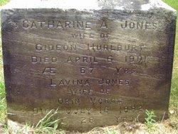 Lavina <i>Jones</i> Vorce