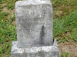 Andrew Anibal
