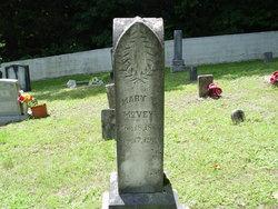 Mary Elizabeth <i>Hutchinson</i> McVey