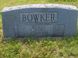 Susan Lydia Margaret <i>Hand</i> Bowker