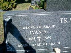 Ivan A Tkach