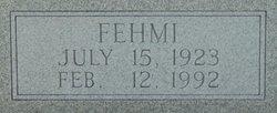 Fehmi Alem