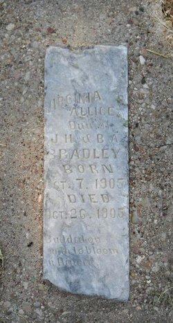 Virginia Alice Bradley