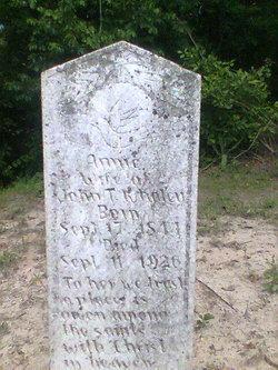 Ann Eliza Annie <i>Williams</i> Whaley