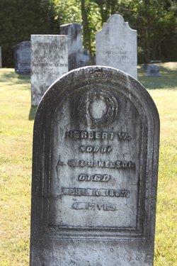 Herbert W Nelson