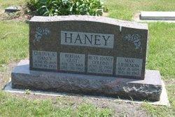 Bertha Theresa <i>Gust</i> Haney