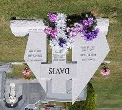 Robert Carr Davis