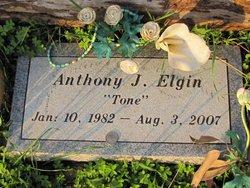 Anthony J. Tone Elgin