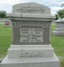 Susan <i>Tribbey</i> Adams