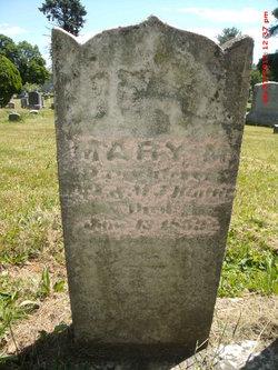 Mary M Beatty