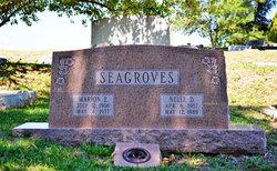 Virginia Nelle Nell <i>Davis</i> Seagroves