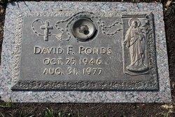 David F Ponds