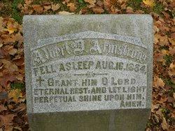 Albert D. Andrews