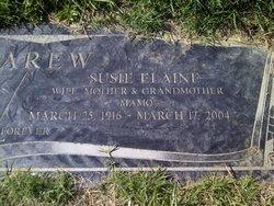 Mrs Susan Elaine Susie <i>Ball</i> Carew