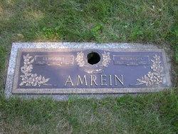 Elwood L. Amrein