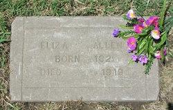 Eliza A. <i>Dunnigan</i> Allen