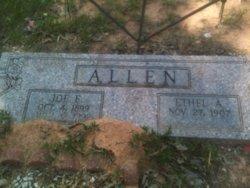 Joe F. Allen