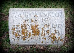 America Badford <i>Carter</i> Olive