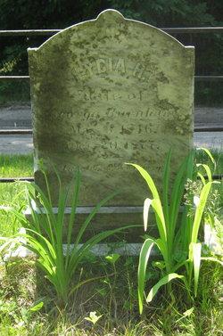 Lydia H. <i>(?)</i> Burnham