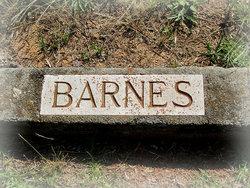 Annie Laura Barnes