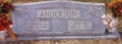 Kitty Mae <i>Hibbard</i> Anderson