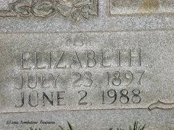 Elizabeth H Fallis