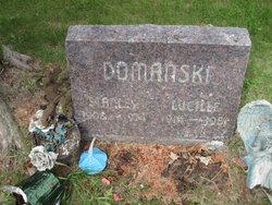 Lucille R <i>Goodwill</i> Domanski
