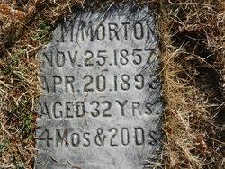 M Morton