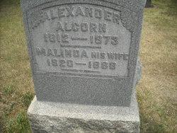 Malinda Alcorn