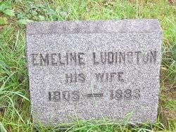 Emeline <i>Ludington</i> Comfort