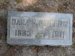 Dana S Bigelow