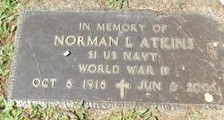 Norman L Atkins