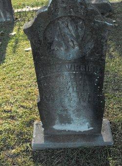 Alice Virginia Bevill